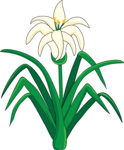 Lily clipart Lily Lily #26816 art image