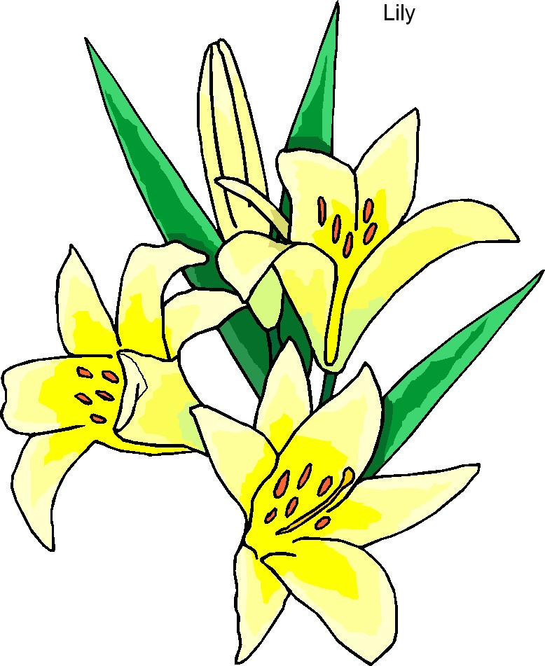 Floral clipart lily Lily%20clipart 20clipart Clipart Images Panda