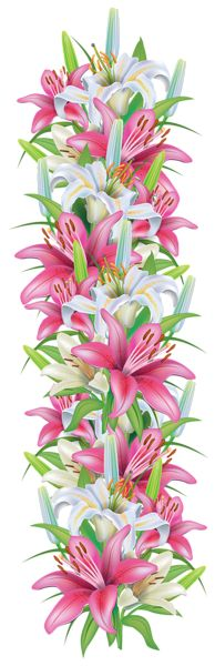 Caribbean clipart flower decoration 25+ Clipart on and clipart
