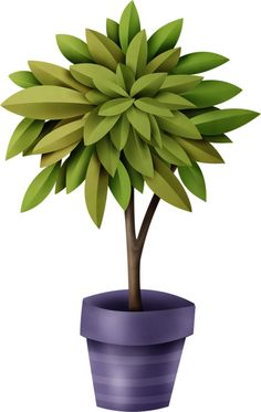 Plant clipart flowering plant Pinterest and pot Яндекс Garden