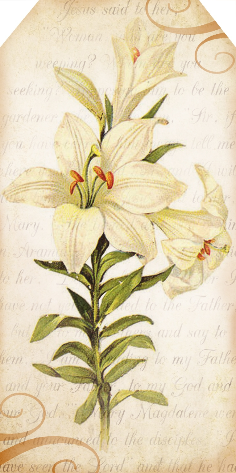 Beautiful clipart easter lily And lift and despair and