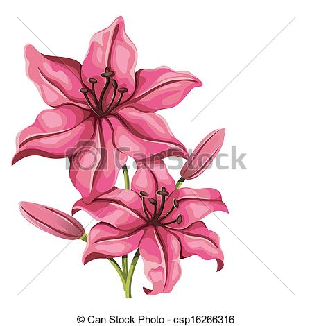 Drawn vintage flower Style Vector lily flower in