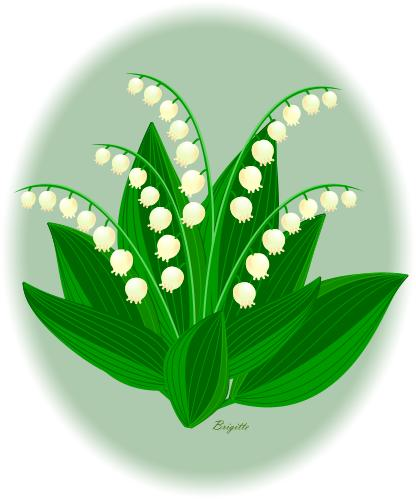 Lily Of The Valley clipart Info Panda the Valley Lily