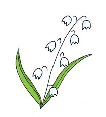Lily Of The Valley clipart Clipart Simple the the valley