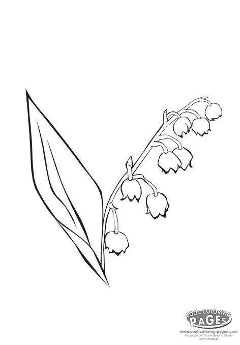 Lily Of The Valley clipart black and white Valley Flowers ::: the Coloring