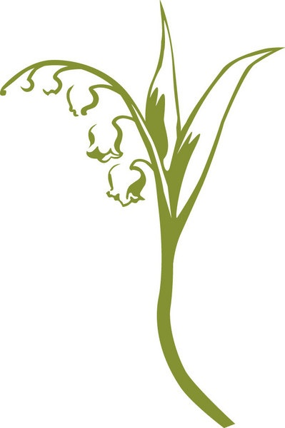 Lily Of The Valley clipart foot Com/uploads/images/ for Image on