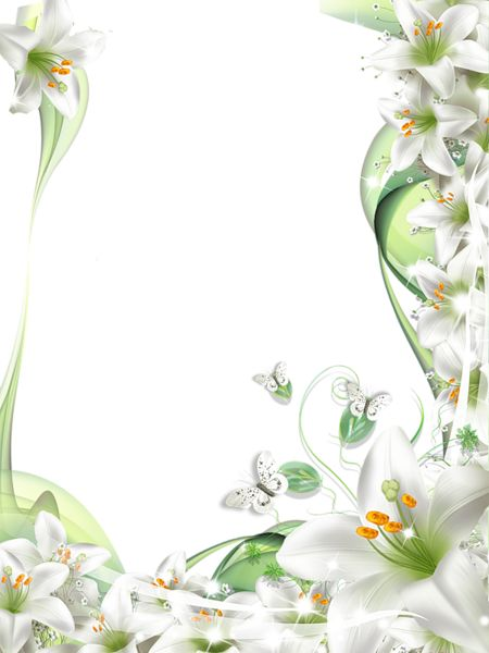 Elower clipart white lily White images PNG Art Frame