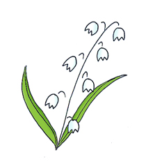Simple clipart lily #10