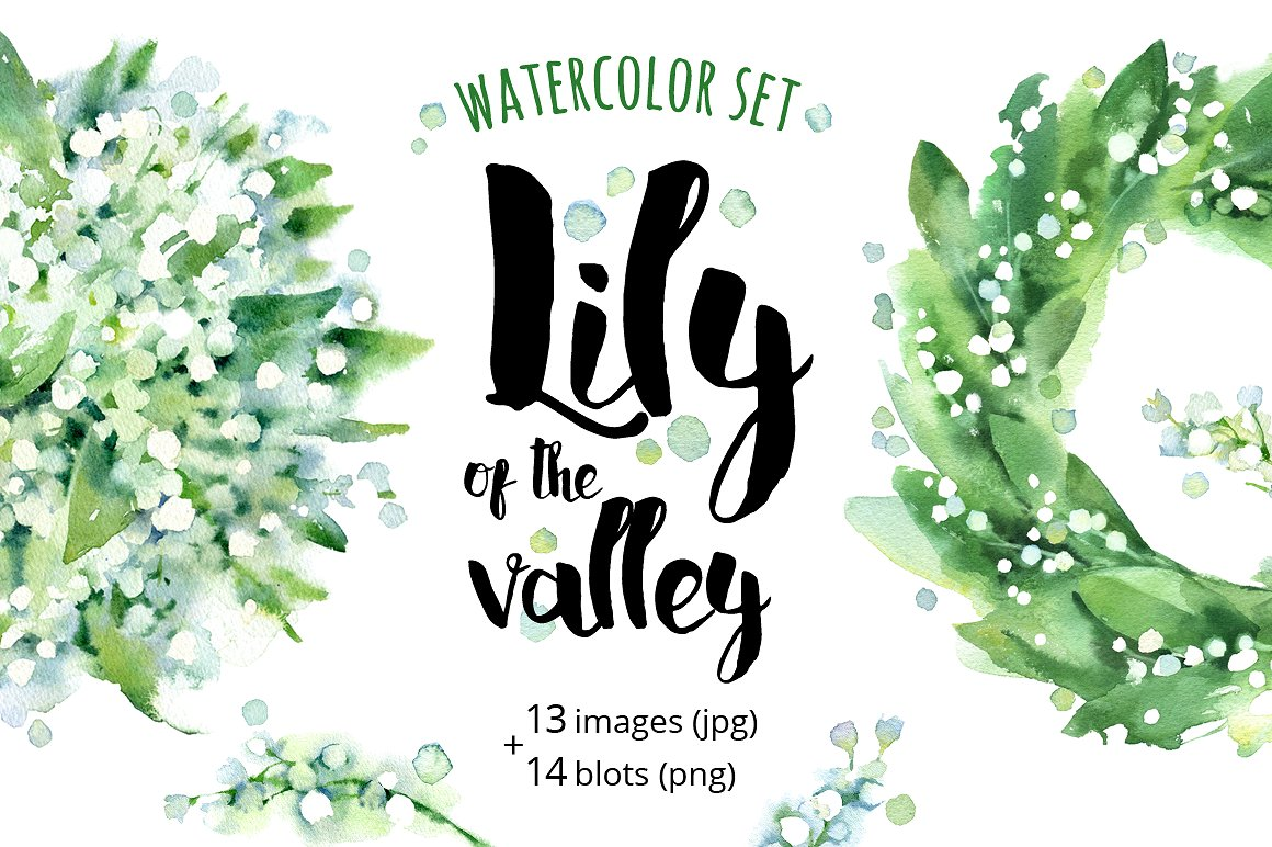 Lily Of The Valley clipart watercolor Valley Creative Illustrations of Market