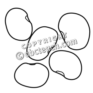Beans clipart black and white Bean Bean Download Black Lima
