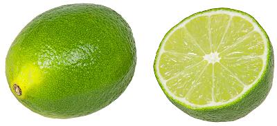Lime clipart Lime Public Clip Art of