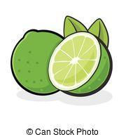 Lime clipart Illustration fruit  564 Clipart