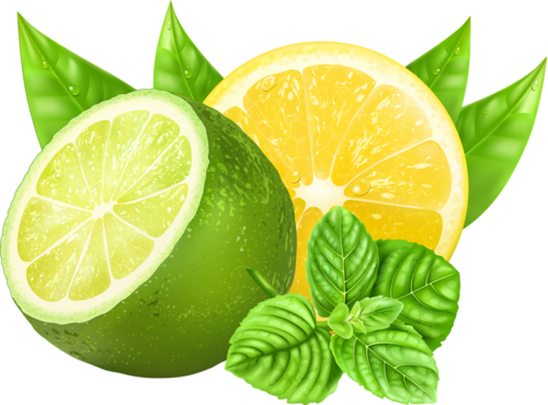 Lime clipart green lemon Green Clip Pin Yellow on
