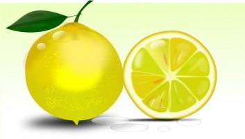Lime clipart green lemon Art 61 images clipart Lemon