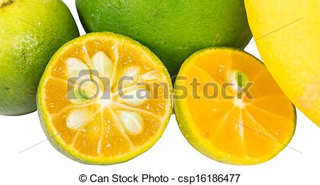 Lemon clipart kalamansi Calamansi Lemon and csp16186477 Picture