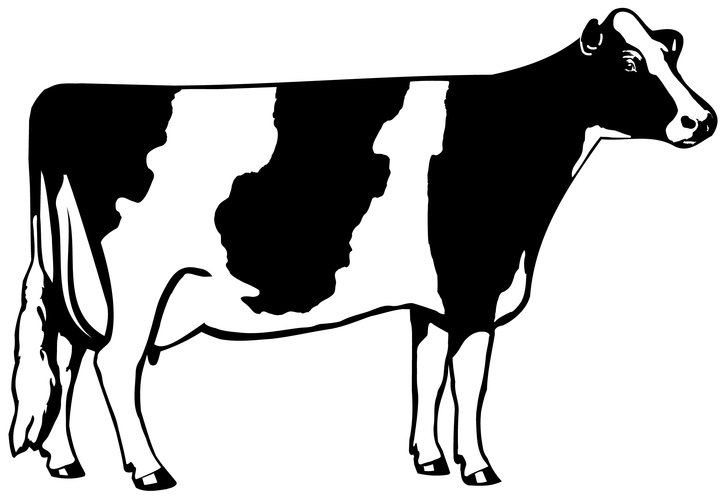 Cattle clipart black and white DownloadClipart deer Cliparts Cows clip