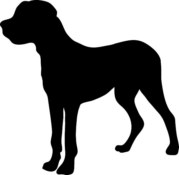 Shaow clipart pitbull Dog art · outline Dog