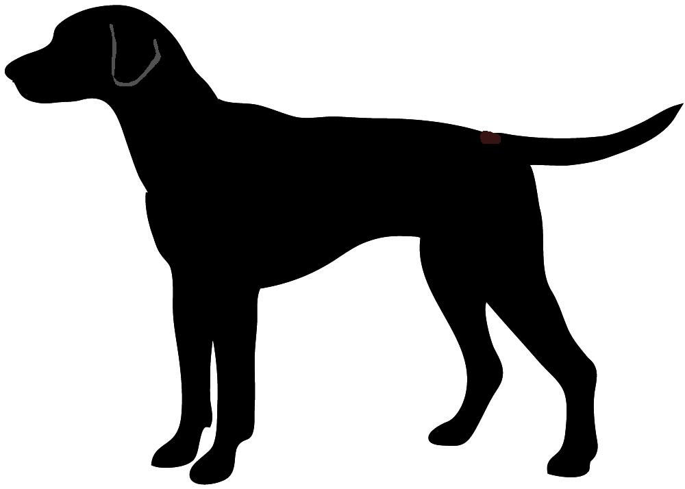 Shadows clipart hunting dog Clip Art Art on Clip
