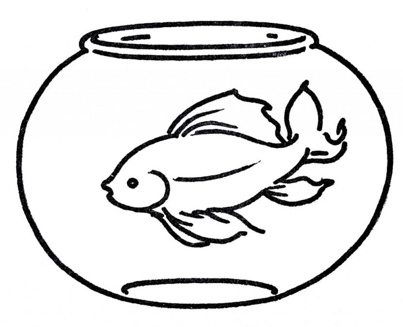 Line Art clipart fish bowl Bowl Fish fish clip image