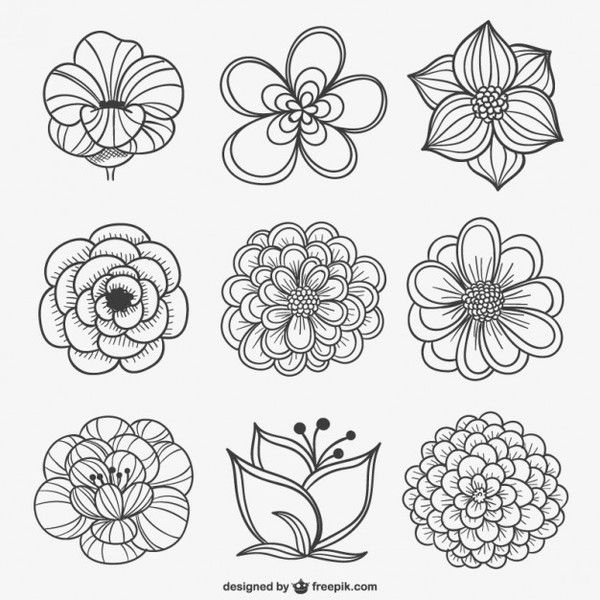 Ranuncula clipart grey flower On clipart Download Black 21