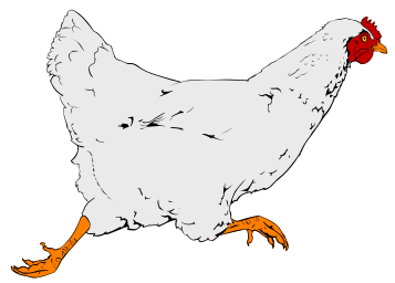 Line Art clipart hen Free Hen Chicken & Art