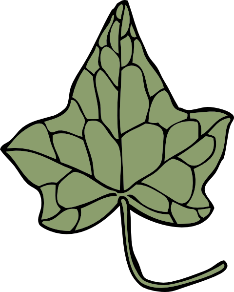 Ivy clipart cartoon #4