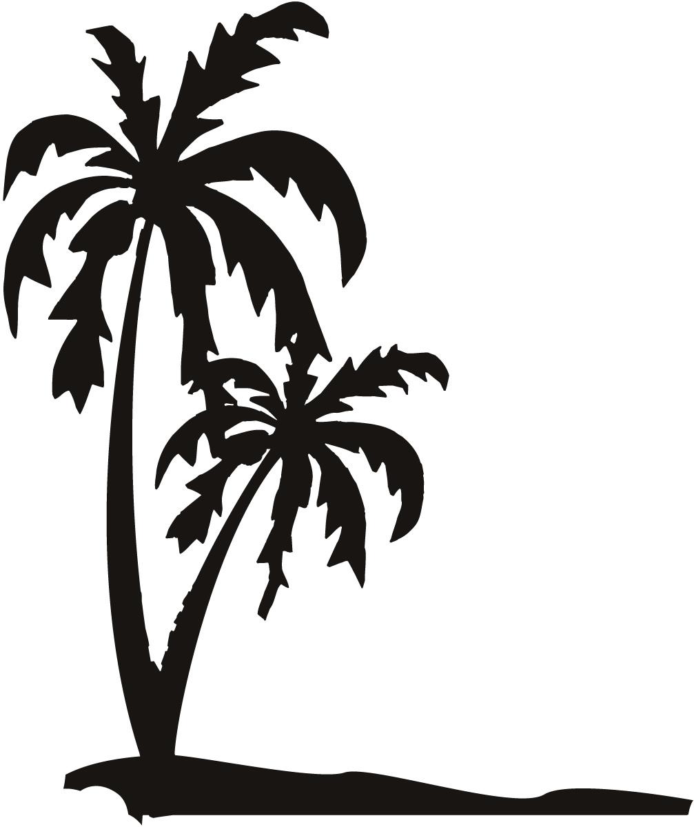 Drawn palm tree black and white #3