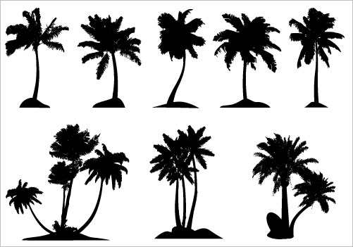 Line clipart palm tree Clip Tree Art Art Trees