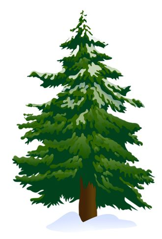 Line clipart pine tree Tree 25+ snowy clipart clip