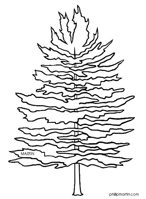 Line clipart pine tree Black Pix Art best Trees