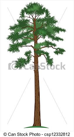 Plant clipart tall Art Pine Clip Vector of