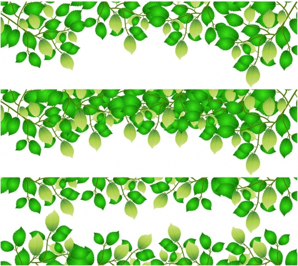 Lines clipart green  Free Leaf use download