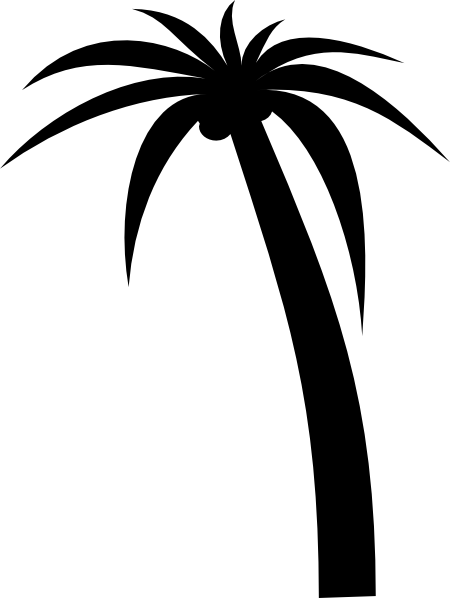 Drawn palm tree black and white #4