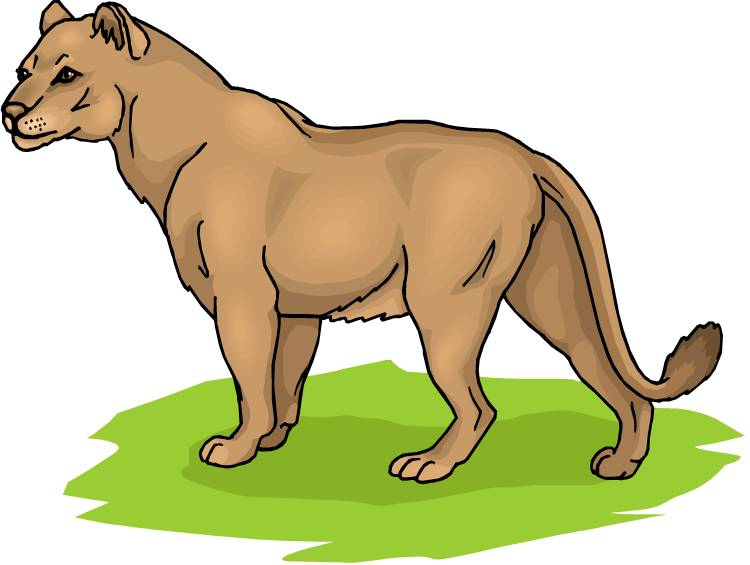 Lioness clipart Wild Clipart Cliparts Lioness Others