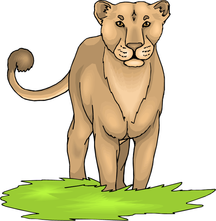 Mountain Lion clipart lioness Lioness Inspiration and Wild Others