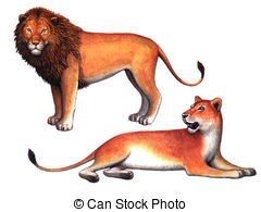 Lioness clipart A Colored 706 the