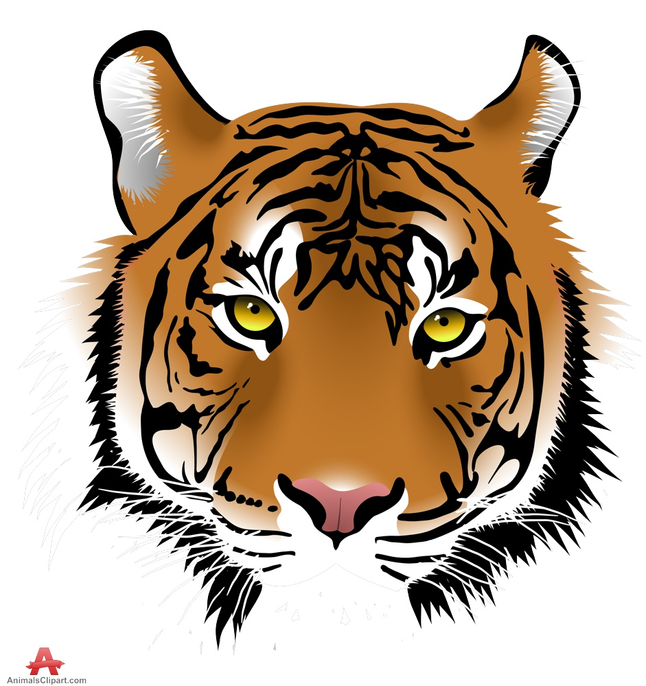 Animl clipart tiger Of lioness Face with keywords