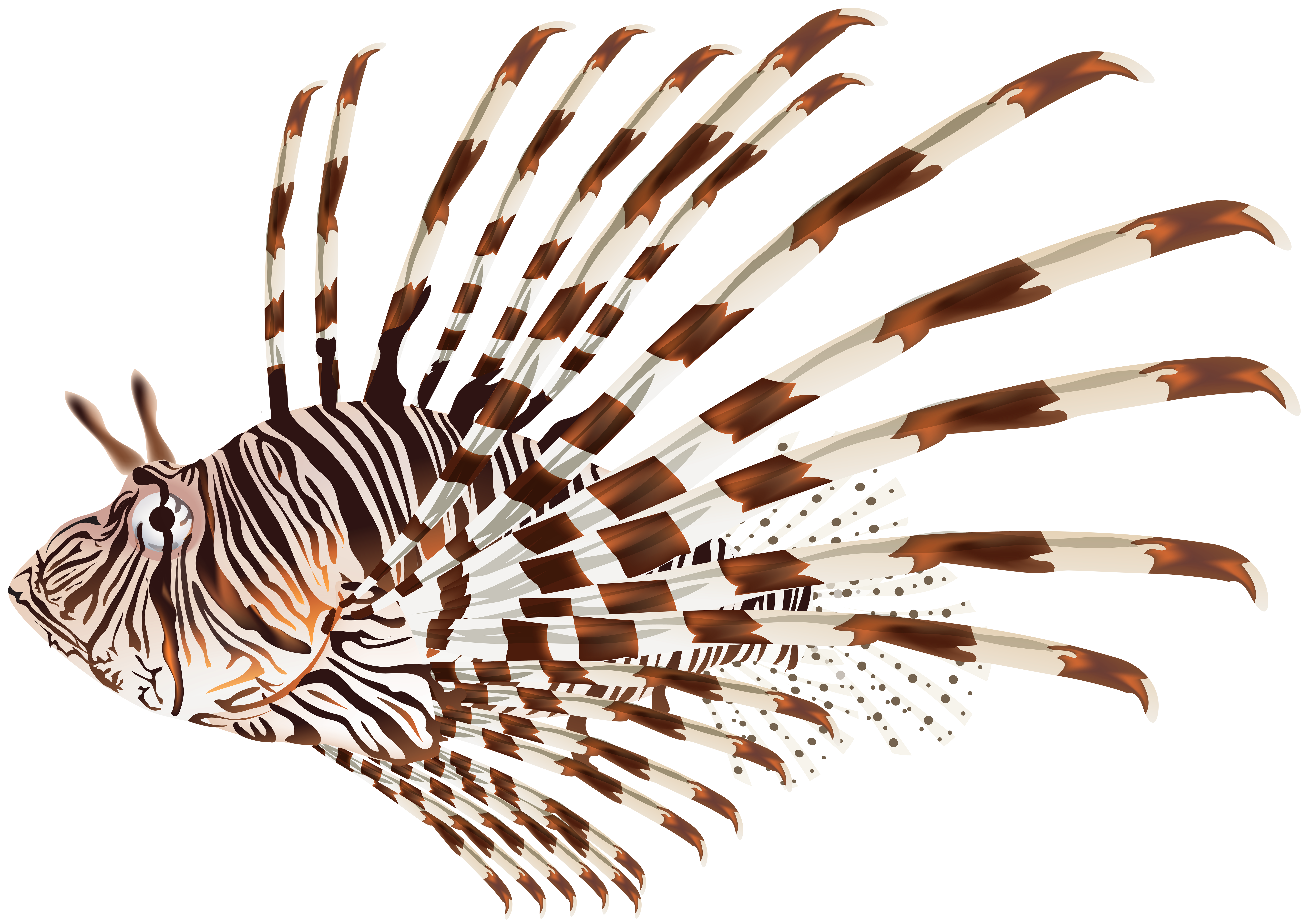 Lionfish clipart Gallery Clip  Tags: PNG