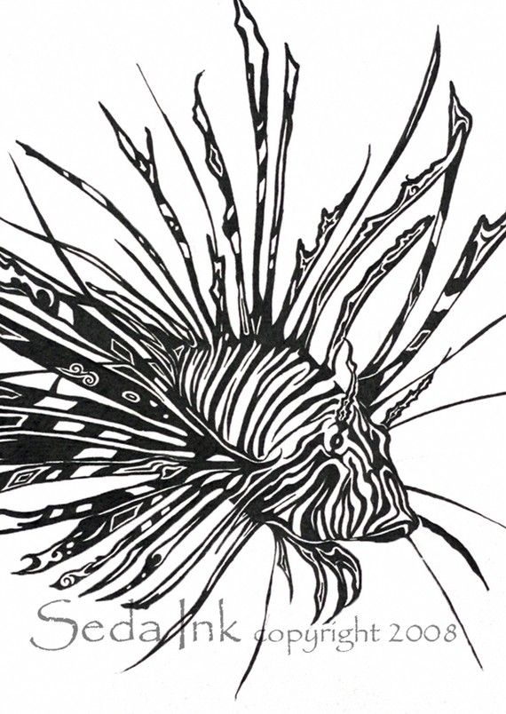 Lionfish clipart Drawing Pinterest best Lionfish Lionfish