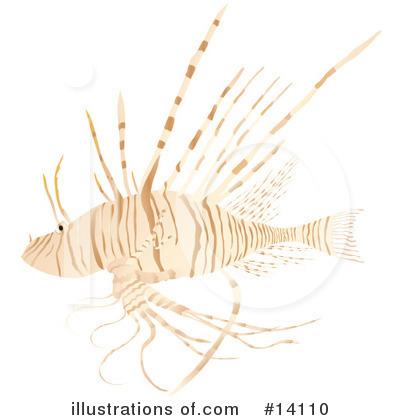 Lionfish clipart Rasmussen Images #14110 Clipart #14110