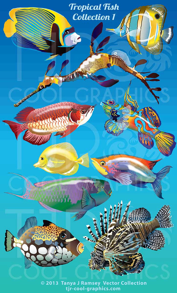Angelfish clipart big fish Art Lion Fish Printable 1