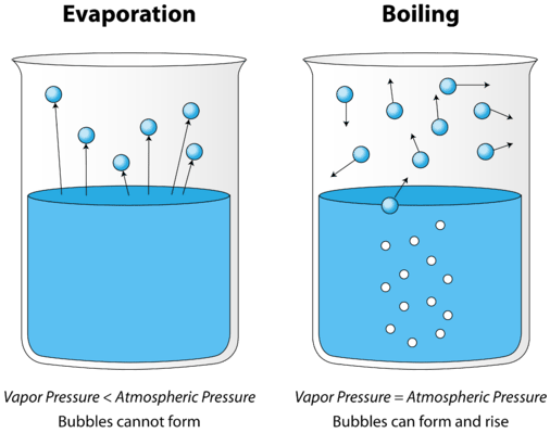 Liquid clipart evaporation Point vapor to liquid liquid