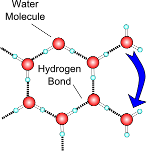 Liquid clipart water molecule Water Liquid