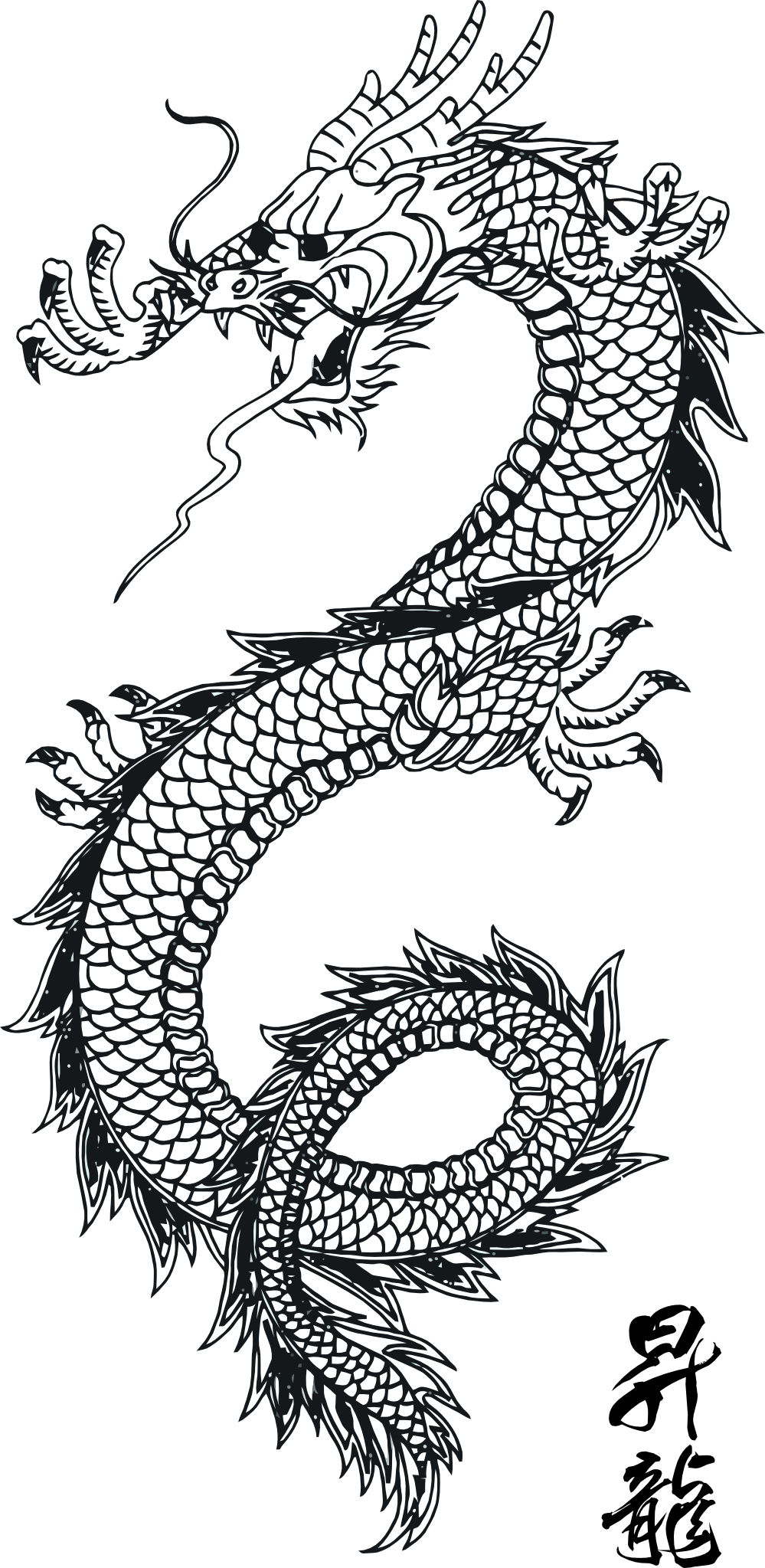 Little Dragon clipart public domain Of Source: I wikia from