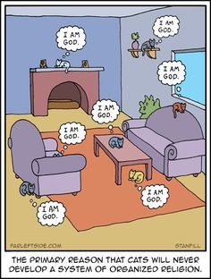 Living Room clipart comic How IMF frame an it