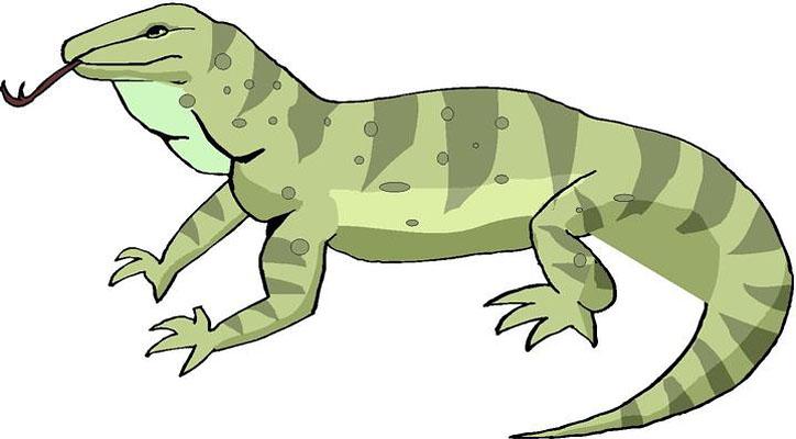 Monitor Lizard clipart Lizard related Lizard clipart clip