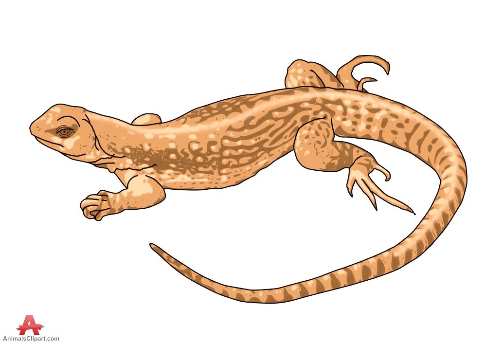 Animl clipart reptile Free download WikiClipArt Cartoon Brown