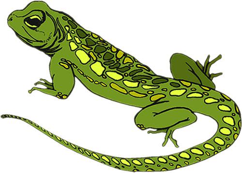 Reptile clipart #7