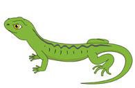 Lizard clipart Size: Art Lizard Free Clipart