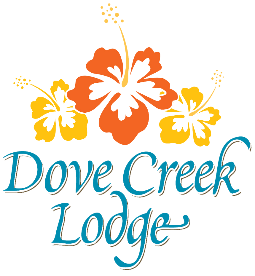 Lodge clipart hotel reservation Reservations Creek Lodge Dove Reservations